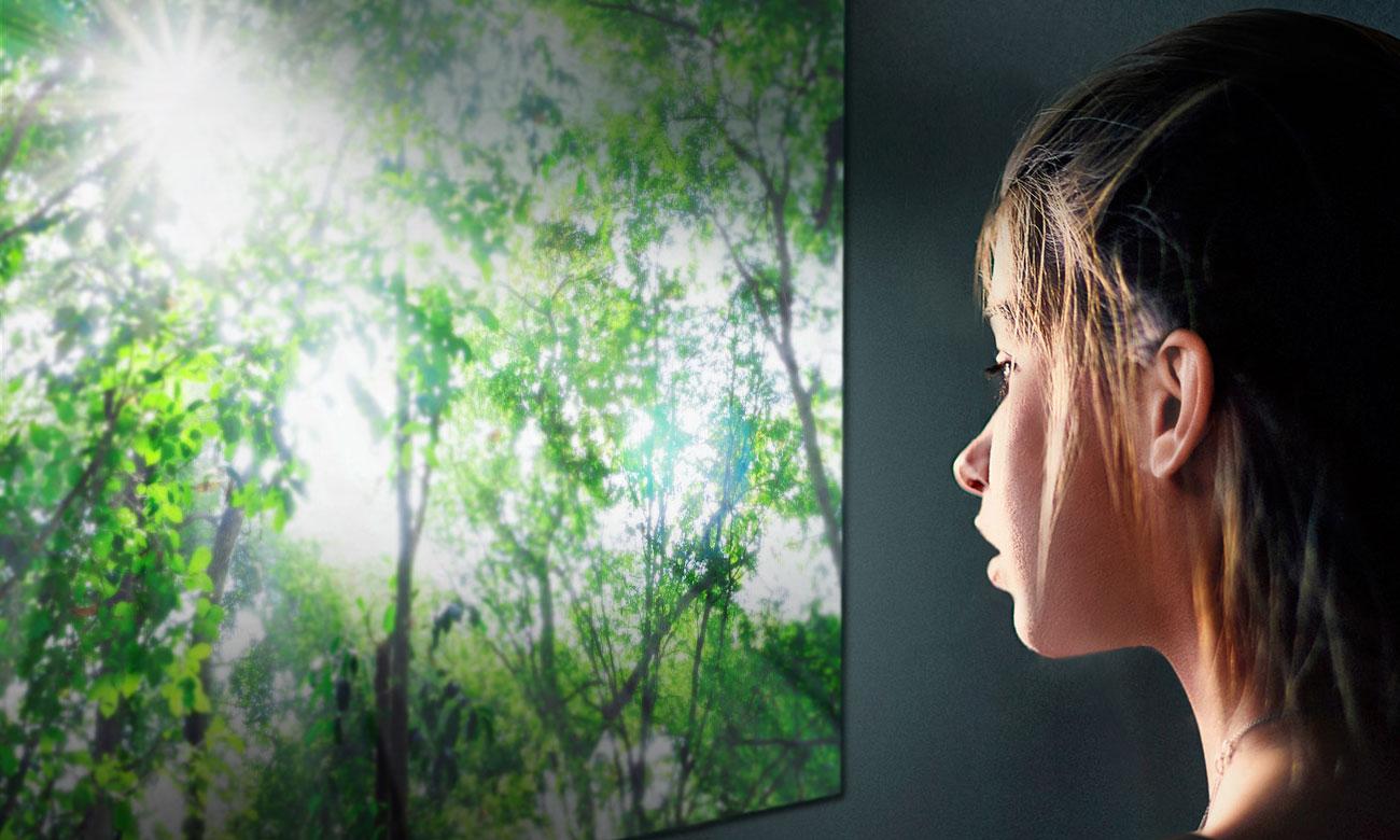 Sztuczna inteligencja i polecenia głosowe w TV LG 65UK6300