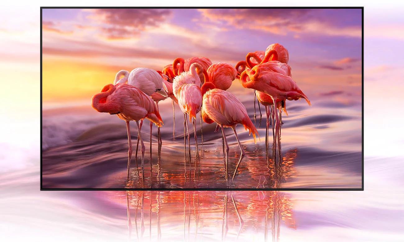Idealny obraz na ekranie telewizora QLED Samsung z HDR10+