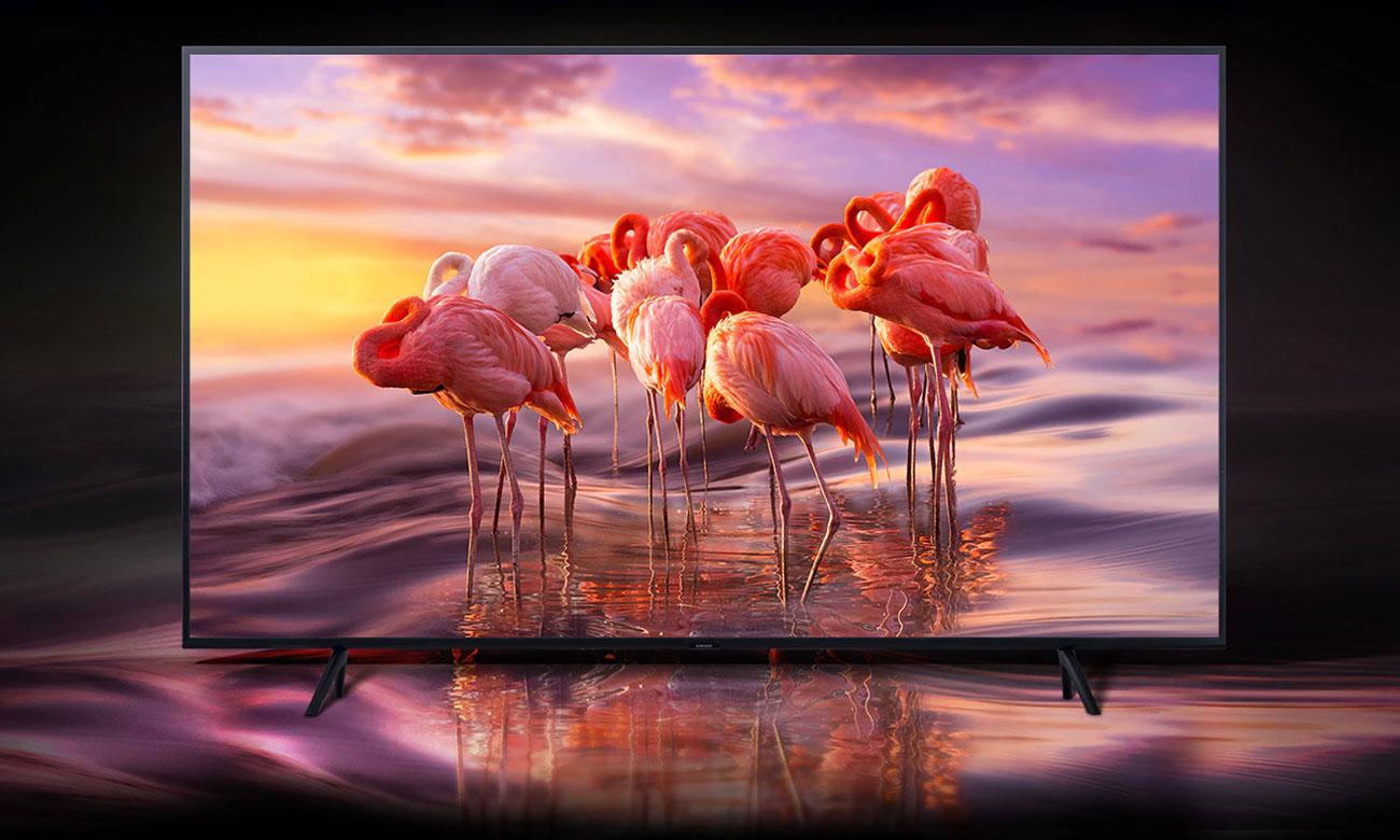 Telewizor z kropką kwantową Samsung QE75Q60RA