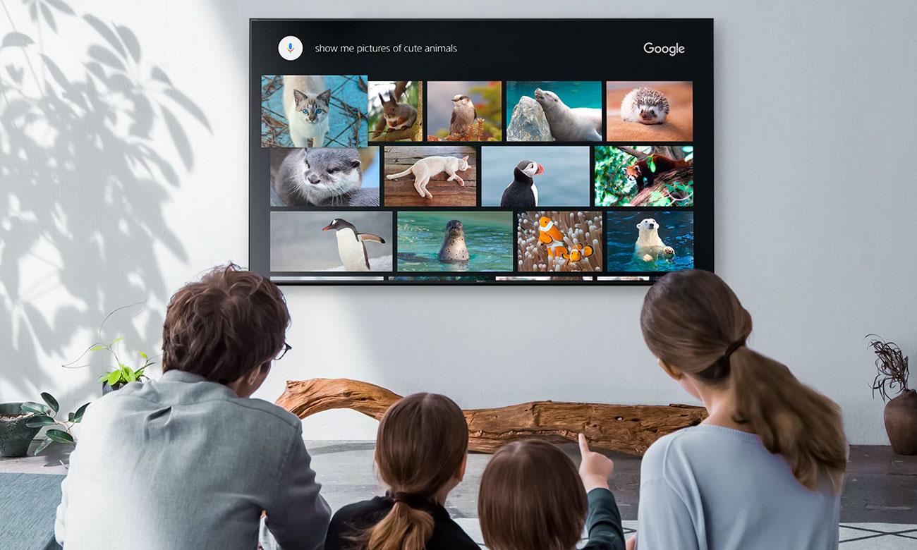 Telewizor Sony KD-85XG9505 z Android TV i dodtępem do Netflix