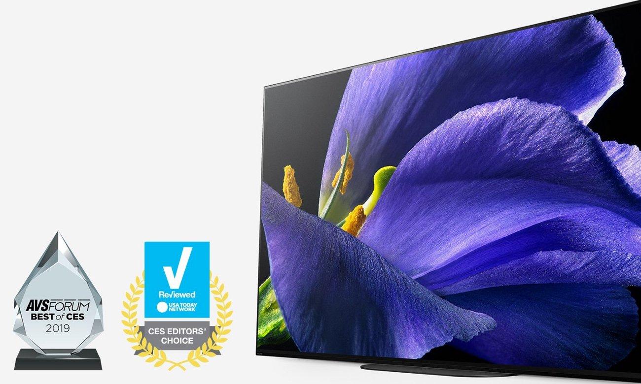 65-caloy telewizor Sony OLED KD-65AG9 Ultra HD