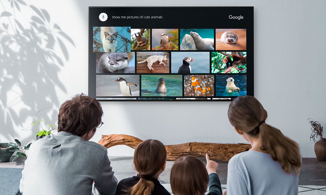 Telewizor Sony KD-43XG8096 z Android TV