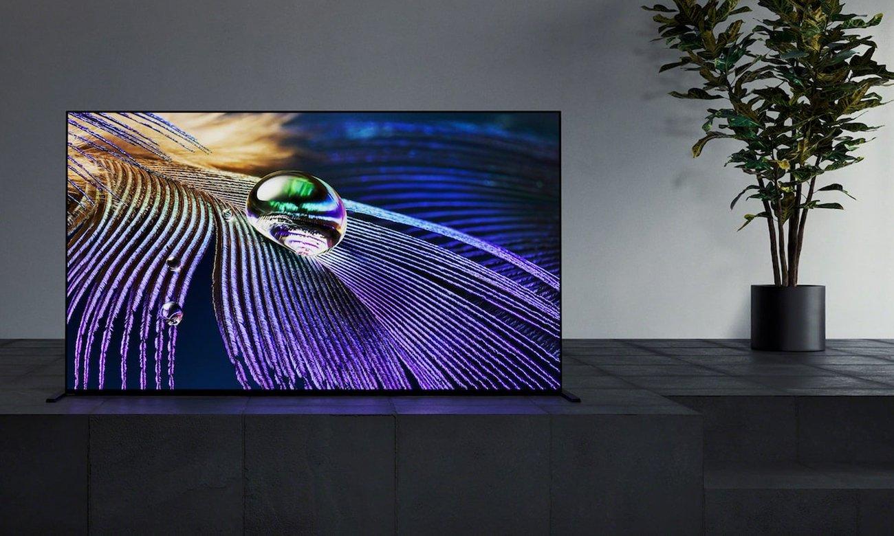Idealne odwzorowanie kolorów na ekranie Sony XR-55A90J