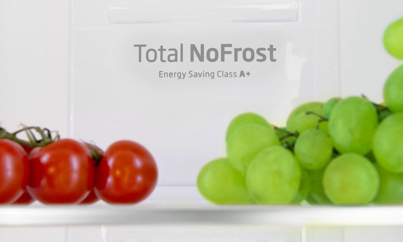 Technologia No Frost w lodówce Amica FK2995.2FTX