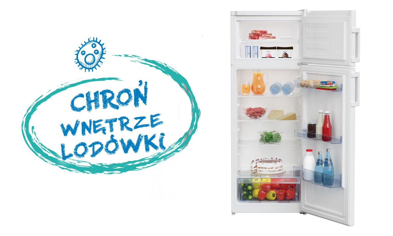 Świeżość produktów, dzięki uszczelce antybakteryjnej w lodówce Beko DSA240K21W
