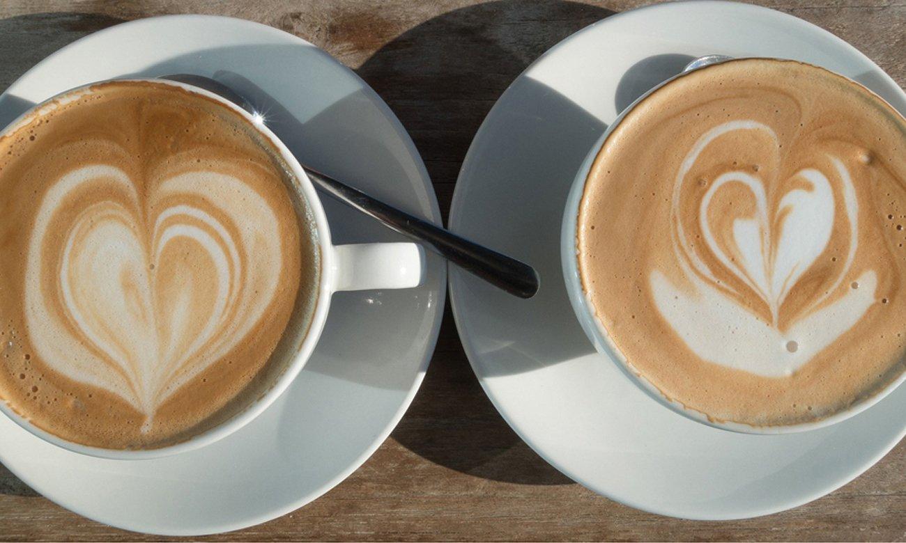 Ekspres do kawy DeLonghi ECAM 23.460.S posiada automatyczny proces płukania i odkamieniania