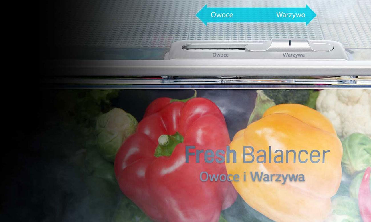 Fresh Balancer w LG GSJ961NSBZ