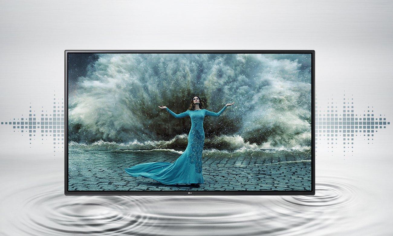 Głośniki w telewizorze LG 55LH6047