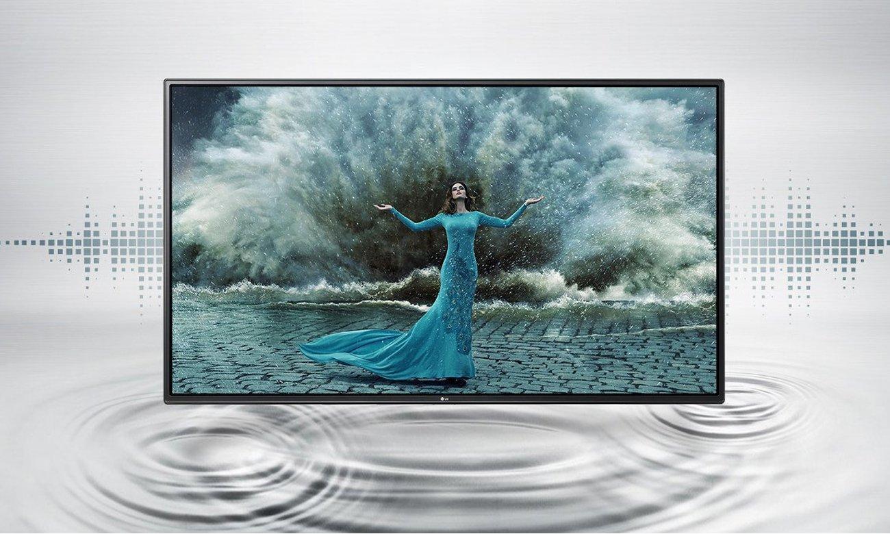 Głośniki w telewizorze LG 43LH570V
