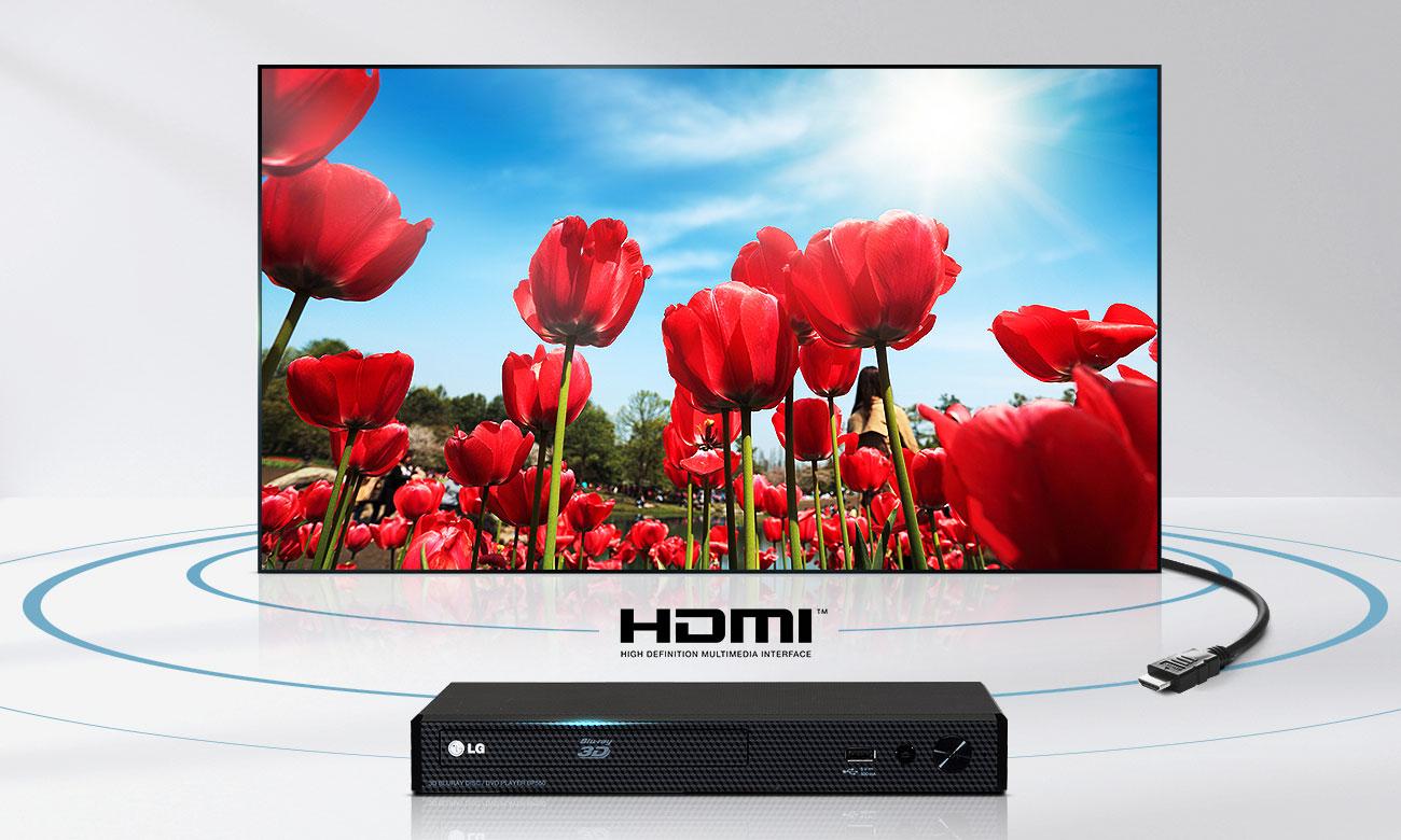Telewizorz LG 49LJ594V ze złączem HDMI