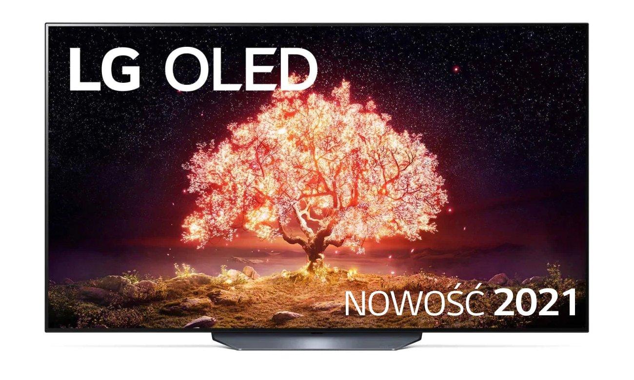 Telewizor OLED LG OLED65B13LA