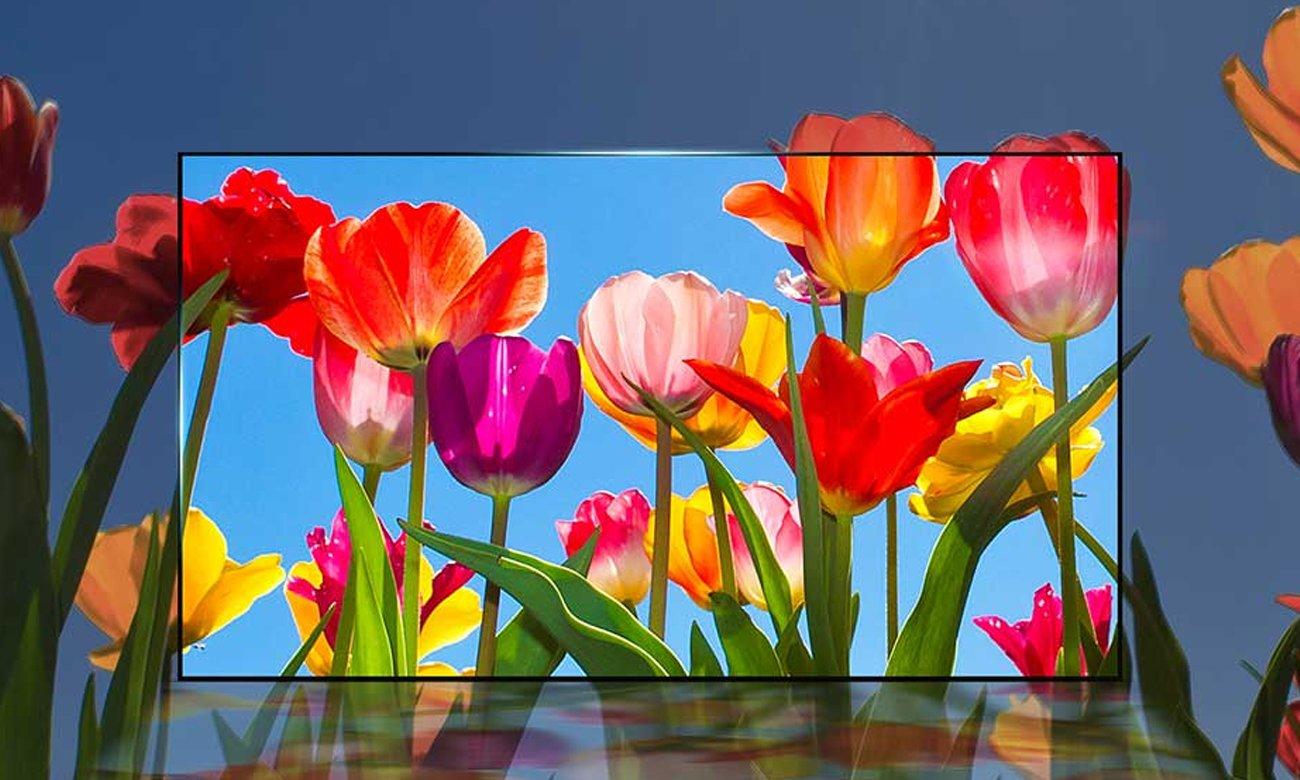 Piękne kolory na ekranie 49 calowego telewizora LG 49UJ6307