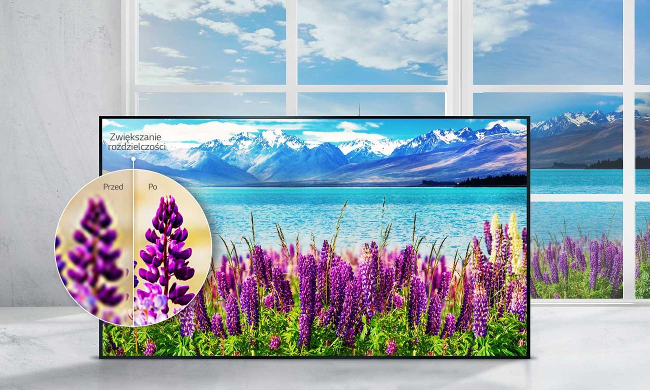 Telewizor Ultra HD LG 55UJ620V