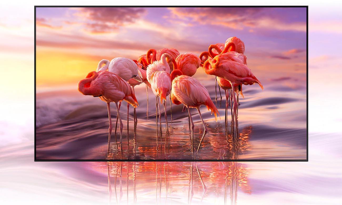 Telewizor HDR 4K Samsung QE55Q80AA