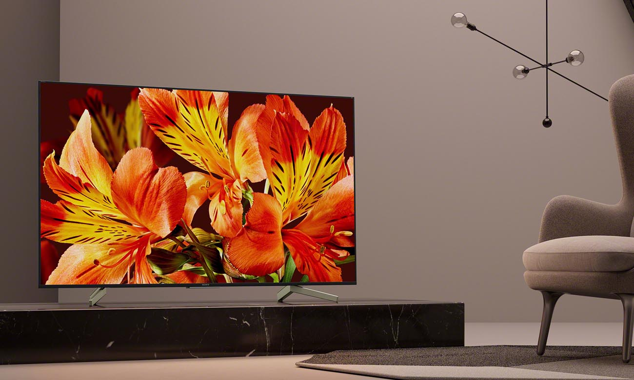 Telewizor 4K Ultra HD Sony 55XF8505