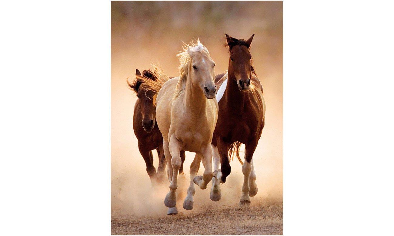 Puzzle Clementoni HQ Running horses 39168