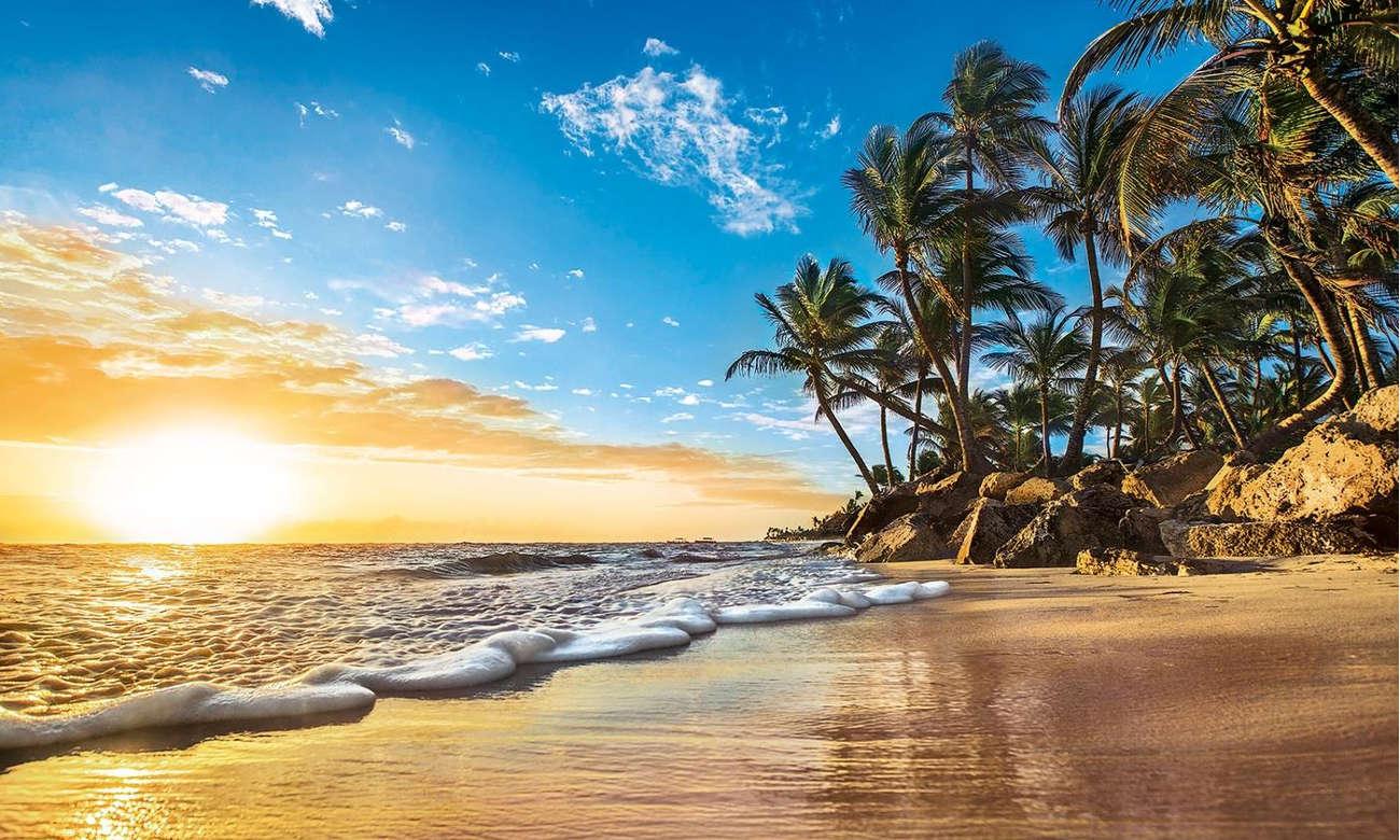 Clementoni PuzzleHQ Tropical sunrise 31681