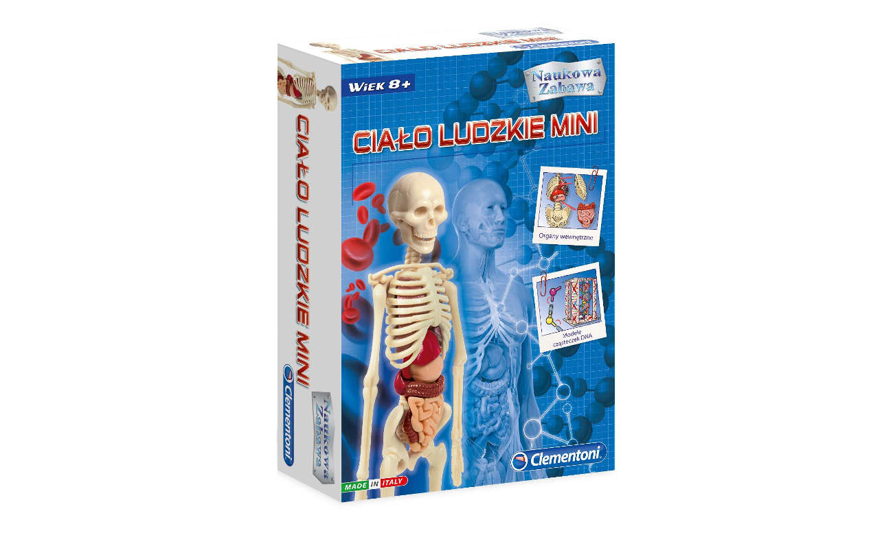Zawartośc zestawu Clementoni Ciało ludzkie mini 50515