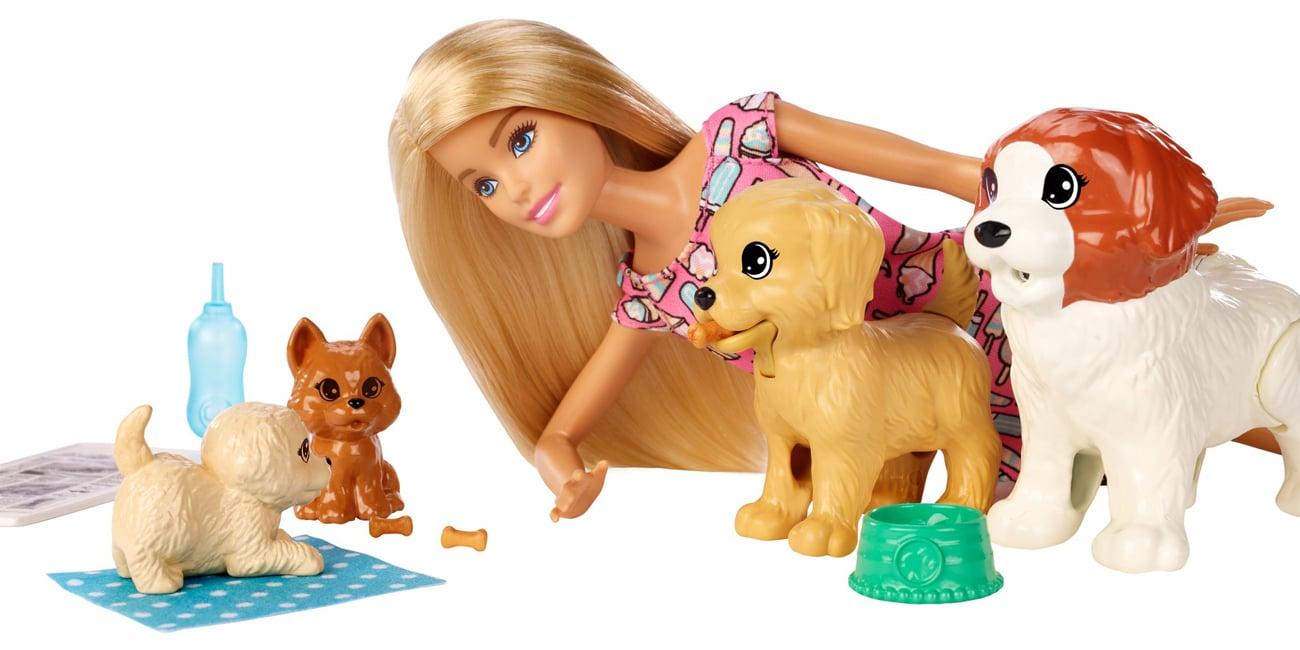 Mattel Barbie Opiekunka piesków Zestaw + Lalka